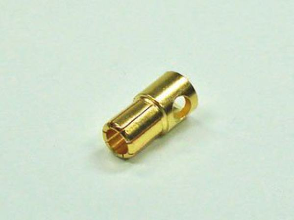 Goldstecker 5,5mm 1St.